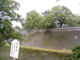 加藤神社から見る天守閣と宇土櫓