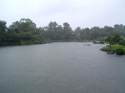 雨、雨、雨の水前寺公園