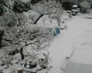 62年振りの大雪