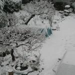 62年振りの大雪!の巻
